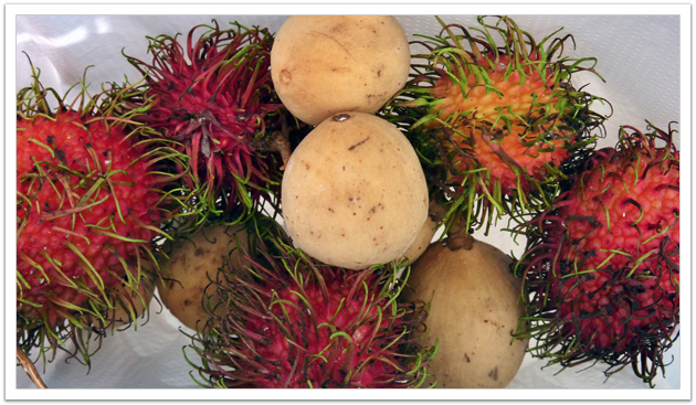 Rambutans and Dokongs