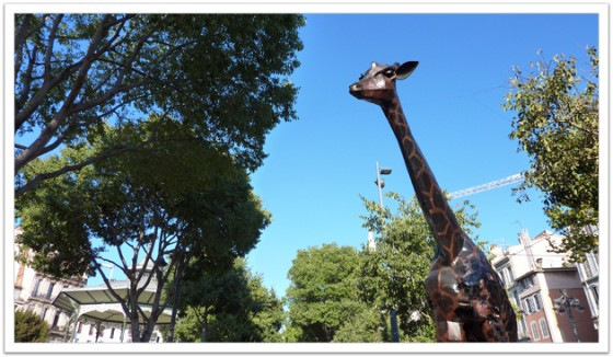 Giraffe at Marseille